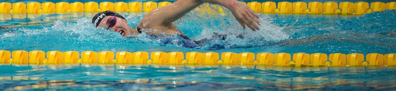 swimming-3448078_1920